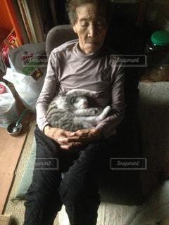 猫,動物,屋内,昼寝,ペット,子猫,人物,ネコ,お婆さん