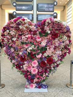 花のハートの写真・画像素材[2267053]