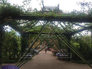 空,公園,緑,青,散歩,景色,竹,アーチ,散歩道,お出かけ,飾り,ガーデン