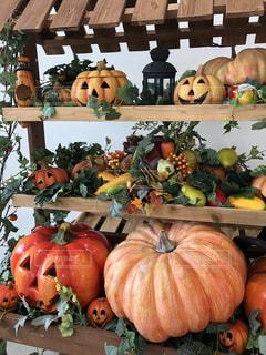 たくさんの棚のかぼちゃの写真・画像素材[2513126]