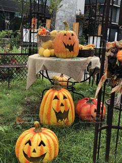 素敵な笑うかぼちゃの写真・画像素材[2513127]