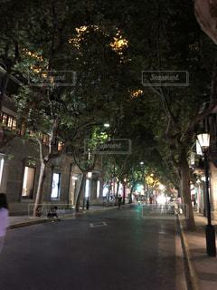 雰囲気のある通りの写真・画像素材[2719560]
