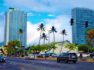 ヤシの木に囲まれた交通に満ちた街路の眺めの写真・画像素材[2508691]