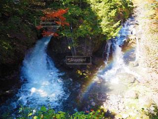竜頭の滝の写真・画像素材[2615828]