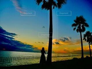 夕日の写真・画像素材[4815724]