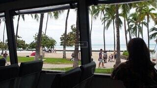 女性,空,ビーチ,窓,女の子,椅子,樹木,人物,人,バス,家具,風,ヤシの木,ハワイ,パーソン