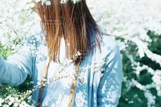お花畑にて。の写真・画像素材[2461651]