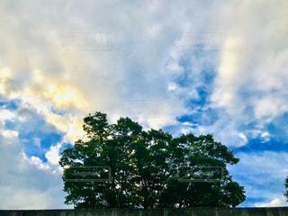 夏の青い雲と綺麗な夕日の雲の写真・画像素材[2292079]