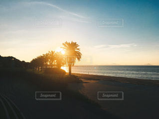 自然,海,ビーチ,島,砂浜,海岸,九州,日の出,長崎,五島列島,五島,やしの木,宇久島