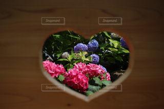 木製のテーブルの上のピンクの花の写真・画像素材[2265812]