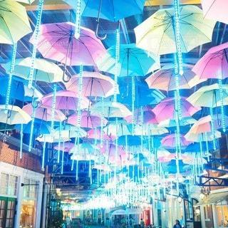 光の傘の写真・画像素材[2367482]