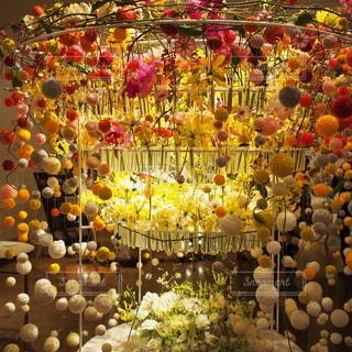 花のアートの写真・画像素材[2370427]