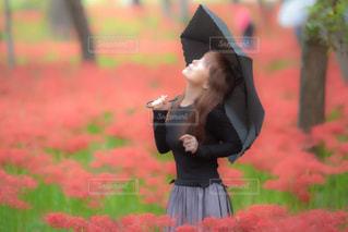 降り出した雨の写真・画像素材[2229372]