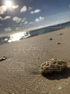 砂浜ごろんの写真・画像素材[2645004]