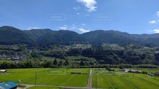 山を背景にした大きな緑の野原の写真・画像素材[2437985]