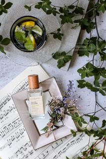 瓶,楽譜,レモン,観葉植物,コスメ,草木,ボックス,ハンドミスト