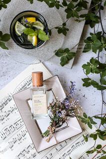 瓶,テーブル,レモン,観葉植物,コスメ,草木,テキスト,ボックス,ハンドミスト
