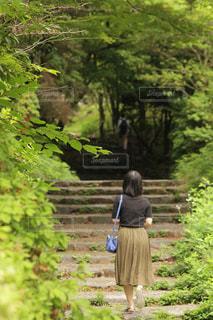 お散歩の写真・画像素材[2759671]