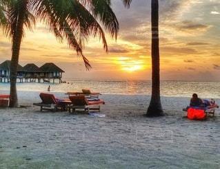 風景,海,空,モルディブ,夕日,屋外,太陽,ビーチ,島,砂浜,夕焼け,海岸,光,樹木,ヤシの木,サンセット