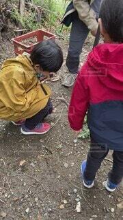 子ども,風景,屋外,人物,人,キャンプ,地面,少年,ハイキング,男の子,履物,少し,釘打ち