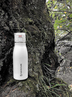 木,大木,苔,ステンレスボトル,タケヤ,タケヤフラスク,タケヤフラスクトラベラー