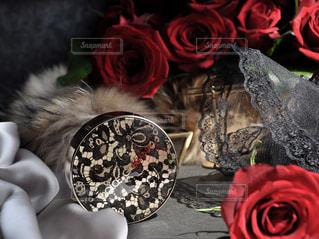 テドルガバコスメの写真・画像素材[3095825]