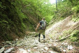 丘を歩いている男の写真・画像素材[2260202]