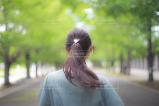 並木道を歩くポニーテールの女性の写真・画像素材[2324196]