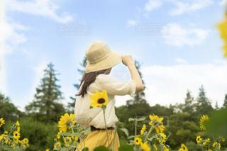 黄色い花を持つテディベアの写真・画像素材[2324247]