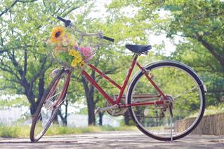 緑道に止まっている花束と自転車の写真・画像素材[2382165]
