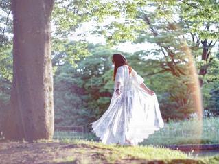 木の隣に立っているワンピースを着た女性の写真・画像素材[2410012]
