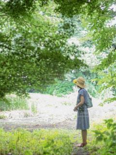 森林の中で立っている女性の写真・画像素材[2432795]