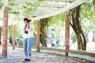 公園で写真を撮っている女性の写真・画像素材[2433156]