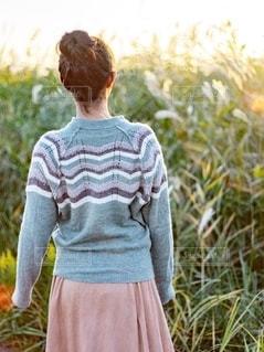 すすきの草原で立っている女性の後ろ姿の写真・画像素材[2731692]