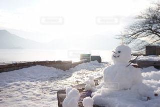 夕陽に照らされている雪だるま達の写真・画像素材[2851575]