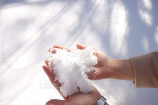 雪を持っている女性の手の写真・画像素材[2851580]