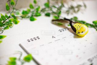 卓上カレンダーと小鳥とリーフの写真・画像素材[3026171]