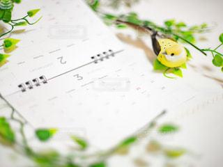 卓上カレンダーと小鳥とリーフの写真・画像素材[3026172]