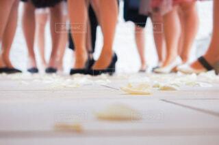 ヒールを履いた女性達の足と床に落ちている花びらの写真・画像素材[4008871]