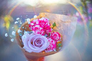 花束のクローズアップと太陽の光の写真・画像素材[4213883]