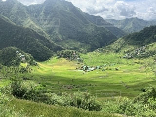 山を背景にした大きな緑の野原の写真・画像素材[2261154]