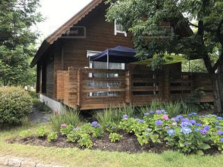 ログハウスと紫陽花の庭の写真・画像素材[3029222]