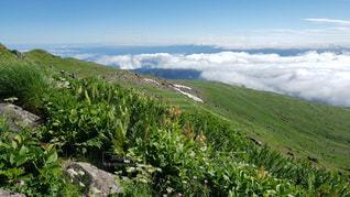 雲の上の花畑の写真・画像素材[2413591]