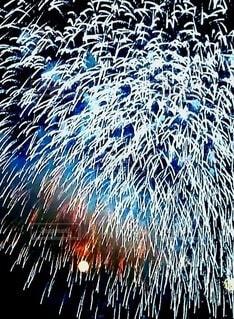 空に飛び散る花火の群の写真・画像素材[4659804]