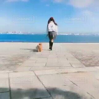女性,犬,ファッション,風景,アウトドア,海,公園,かわいい,晴天,後ろ姿,歩く,ウォーキング,海辺,散歩,青い海,青い空,景色,女子,少女,爽やか,清々しい,人物,背中,道,人,座る,可愛い,ブーツ,ツインテール,生活,dog,sea,雰囲気,Cute,犬の散歩,ライフスタイル,わんちゃん,おさんぽ,パーク,イメージ,路面,スタイル,2匹,朝の海,半分,光景,日課,おさげ,去る,白と茶,犬と一緒,犬と暮らす,海辺の暮らし,動画素材,向う,パーソン,毎朝ルーティン