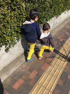 屋外,晴れ,散歩,男の子,兄弟,おそろい,お散歩,手つなぎ,お天気