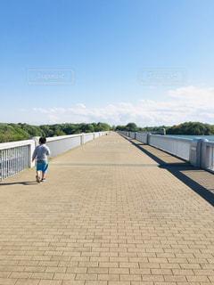 公園,橋,屋外,湖,雲,青空,散歩,男の子,よーいドン