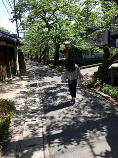 女性,空,屋外,晴れ,青空,散歩,人物,人,旅行,通り,日陰,おでかけ,城崎