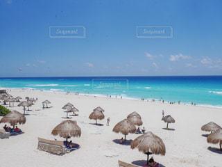 カリブ海のビーチの写真・画像素材[2337977]