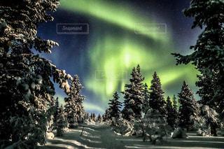 雪とオーロラの写真・画像素材[2830272]